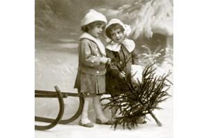 Servetėlių pakelis sPOK58-13