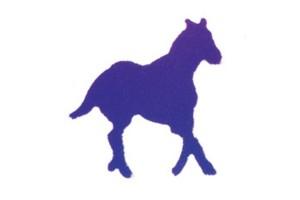 "Dekoratyvinis skylamušis, ""arkliukas"" 12X10 mm., 1501025"