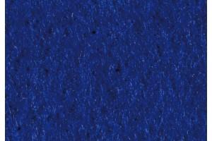 Filcas, 20x30 cm., 1 mm., tamsiai mėlyna, 8436736