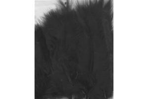 Feather, black color.