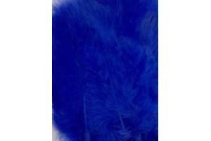 Feather,blue color