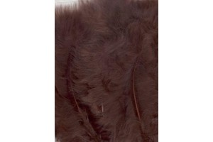 Feather, brown