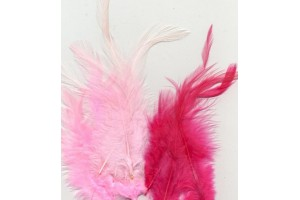Plunksnų rinkinys rožiniai atspalviai 15 vnt.