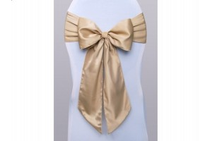 Satin Sash party decoracion