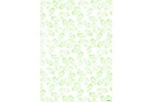 Popierius 1 vnt. 29x21 cm. 160 gr. NR 217