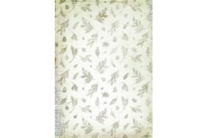 Paper 1 sheets  29x21 cm. 160 gr. N0 225