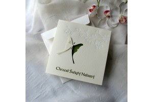 Invitations Card Butterfly