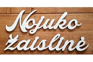 Wooden personalized word 10 cm. high 2 units