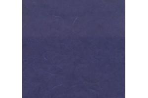 Vienspalvis ryžinis popierius 65x95 cm. (mėlynas)